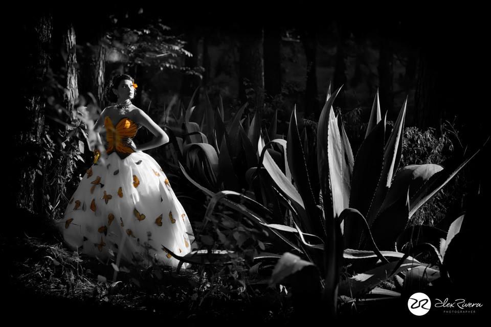 Luces y sombras en Fotografias